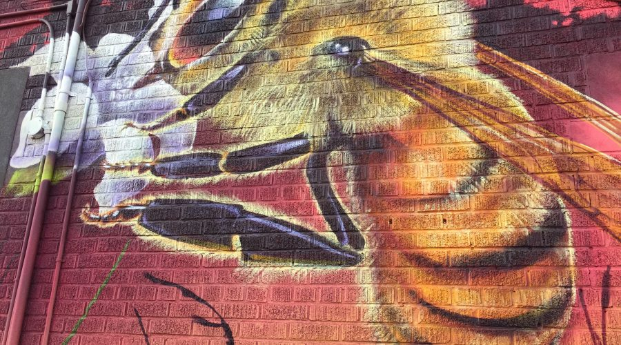 """""""The Pollinators"""" – Our New Mural"""