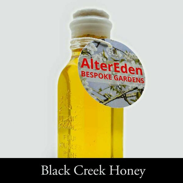 Black Creek Honey